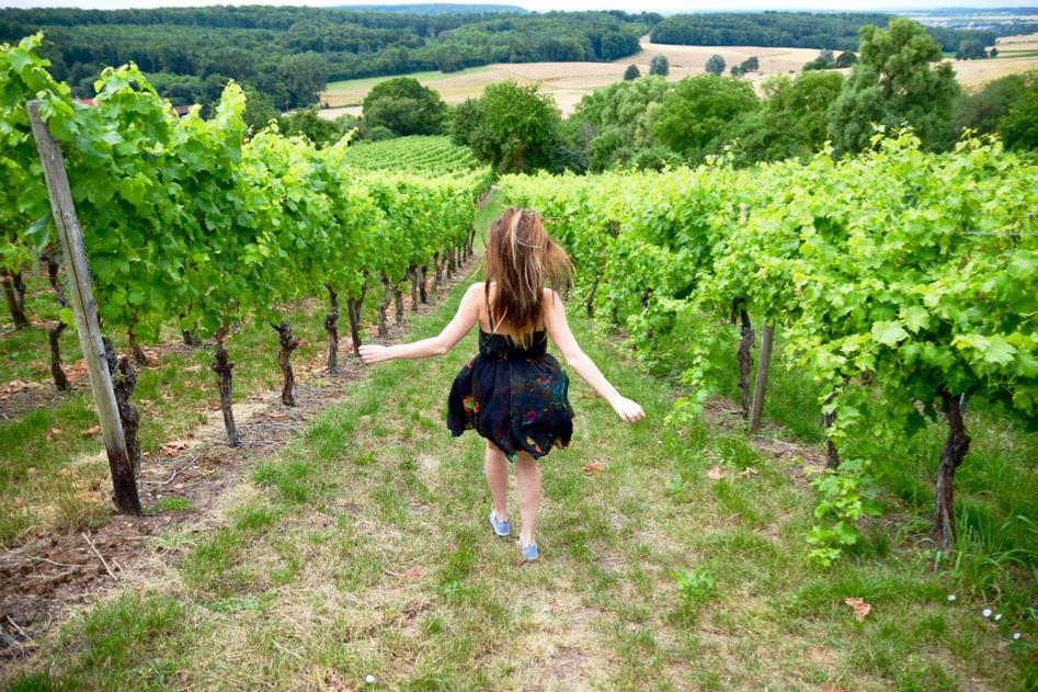 oberderdingen germany wine region