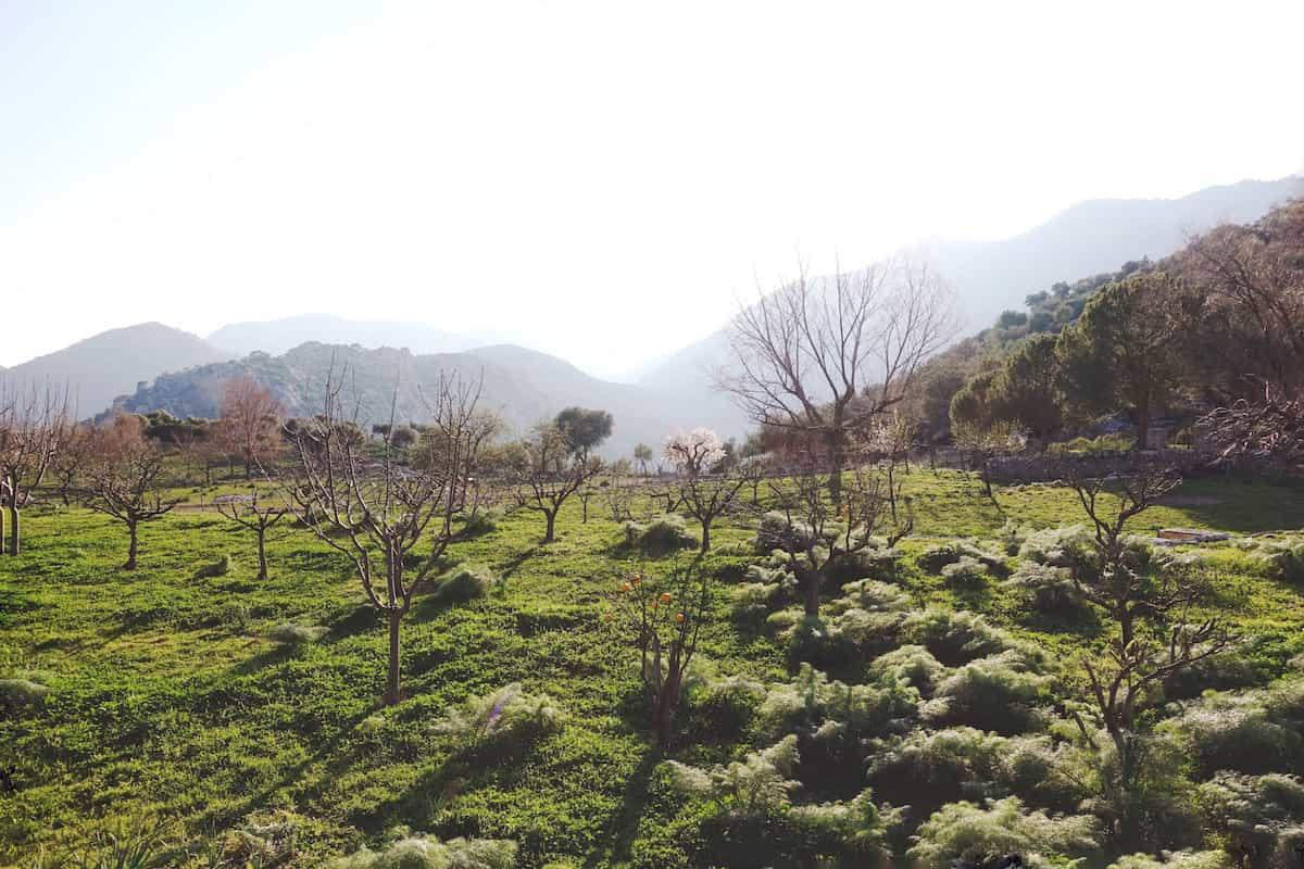 view from tossals verds mallorca serra de tramuntana