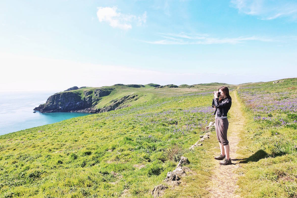 pembroke coast path